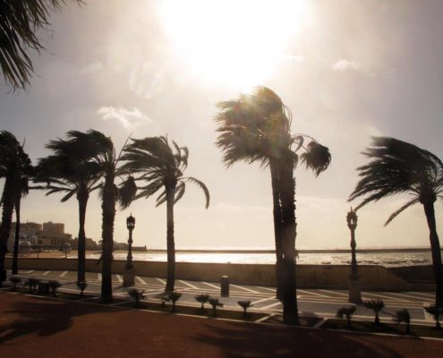 Strum in Cadiz