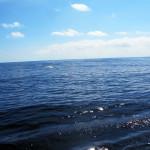 Welle mitten in der Biskaya
