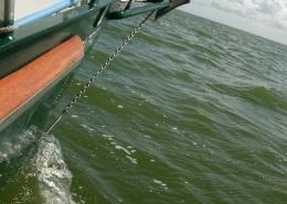 RazFaz gleitet durchs Wasser