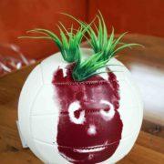 Mein neuer Freund Wilson