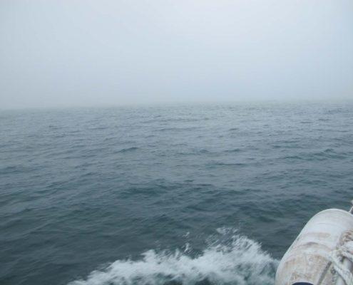 Erstmal Nebel