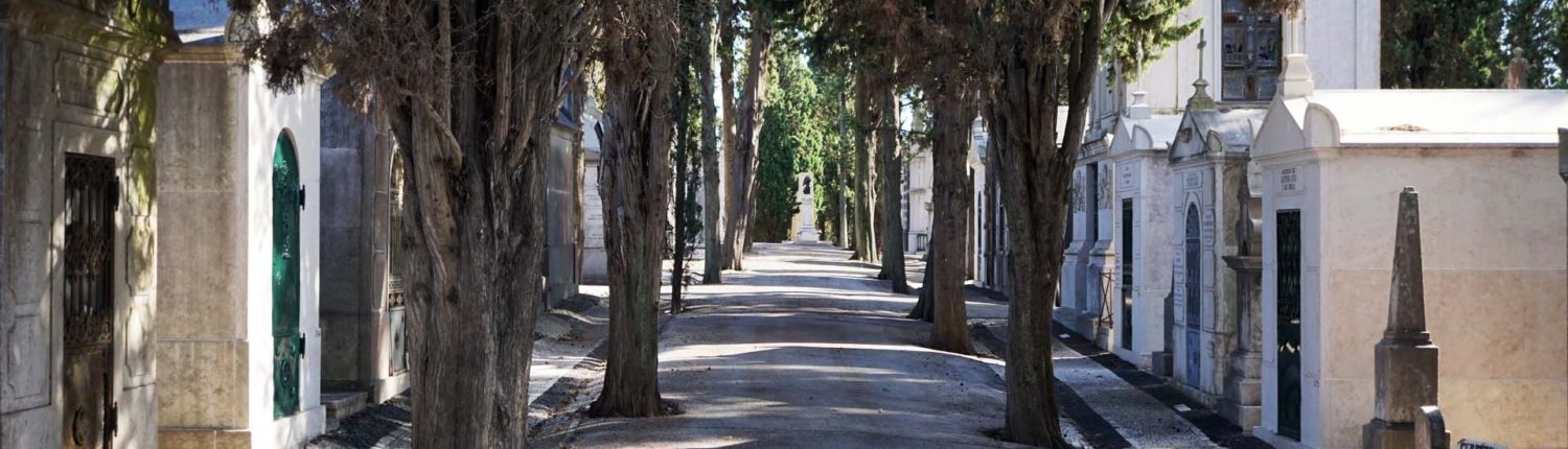 Friedhof in Lissabon