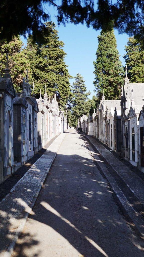 Friedhof in Lissabon