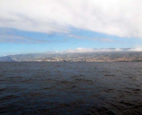 Madeira Yeah!