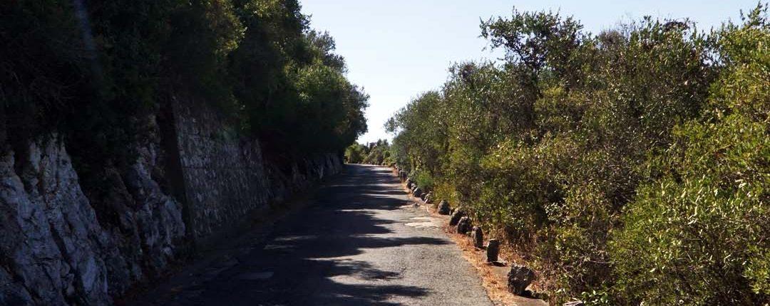 Naturpark auf dem Felsen