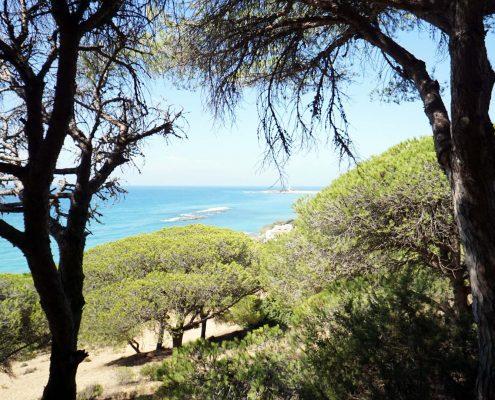 Blick auf Cabo Trafalgar