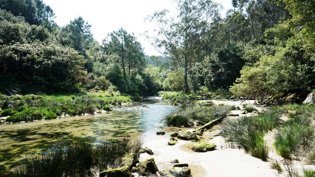 Ria de Camarinias - Hoch im Ria