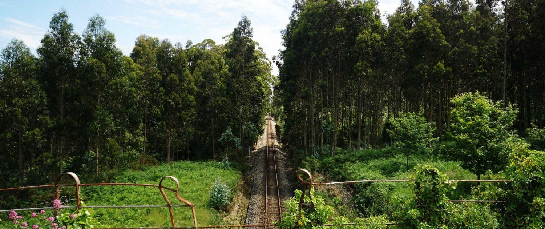 Ria de Baqueiro - Dieselbetriebene Bahnstrecke