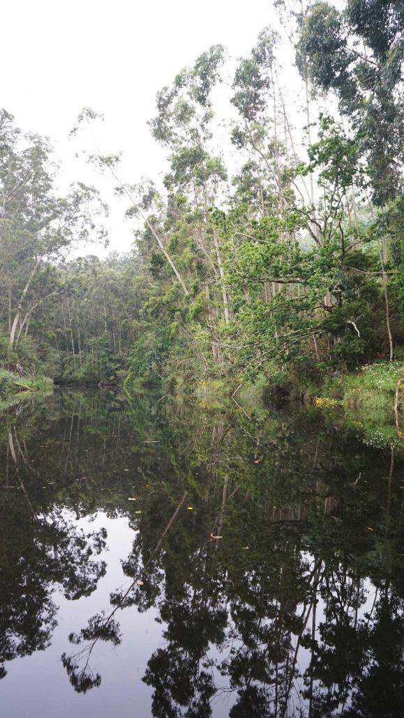 Viveiro - Hoch im Ria mit dem Beiboot