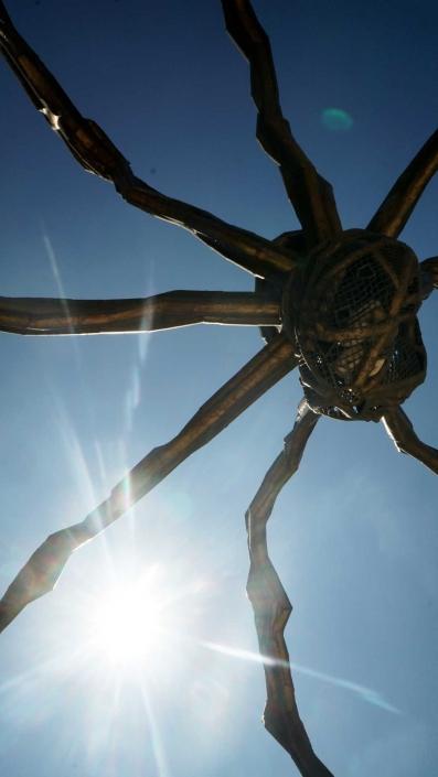 Bilbao, Guggenheim - Spinne in der Sonnne