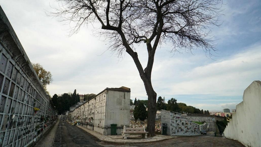 Lissabon - noch eine Perle im Norden
